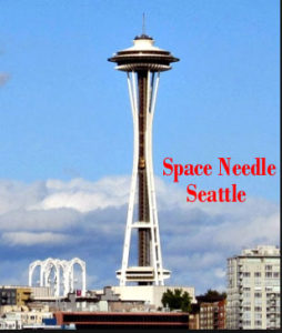 Space Needle Restraint Settle